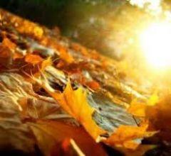 Jesień w  Cieplicach