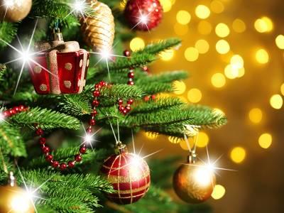 Święta Bożego Narodzenia nad morzem - Jarosławiec | Hotel Król Plaza Spa