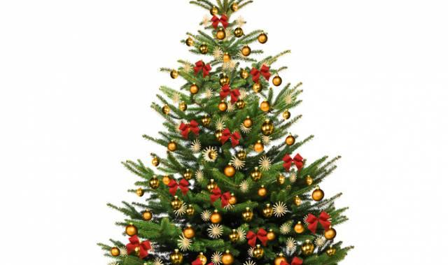 Willa Sudety święta Boże Narodzenie 2018 Offers Widget Kudowa